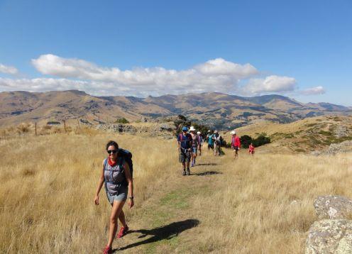 Z port hills hike feb 2020