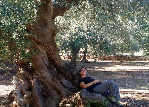 Puglia & Basilicata Walking Tour