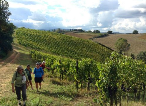 Tuscany Wine & Walking Tour