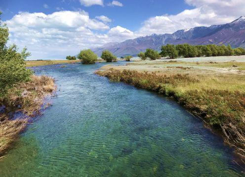 Tasman stream
