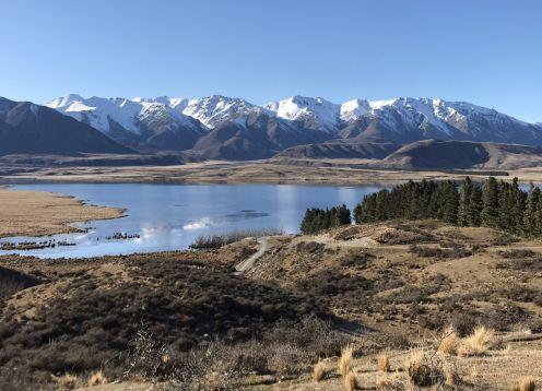 Lake heron 2